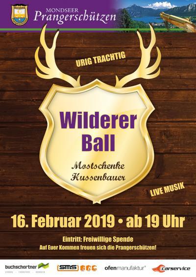 Wilderer Ball